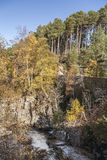 Gorge at Feshiebridge in the Highlands of Scotland. Gorge at Feshiebridge in the Cairngorms National Park in Scotland Royalty Free Stock Photography