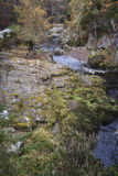 Gorge on the Findhorn River at Moray in Scotland. Royalty Free Stock Photo