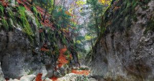 Gorge of the Grand Canyon of Crimea Royalty Free Stock Images