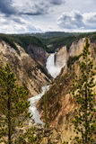 Gorge grande de Yellowstone Photographie stock libre de droits