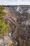 Gorge grande du fleuve de Yellowstone Photos stock