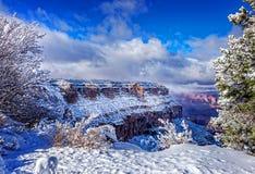 Gorge grande en hiver Photo libre de droits