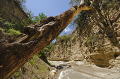 Gorge in the Hell's Gate National Park. Kenya Stock Image