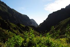 Canary Islands, Tenerife, The Masca gorge stock images