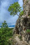 Gorge National Park Nerei- Beusnita, Romania Royalty Free Stock Image