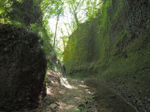 Gorge near Iokido Cave. Which is a marine cave and located in Kochi, Japan Stock Image
