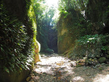 Gorge near Iokido Cave. Which is a marine cave and located in Kochi, Japan Stock Images