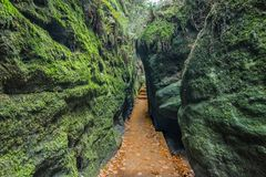 Free Gorge Overgrown With Moss Over A Narrow Rocky Path Royalty Free Stock Photography - 130735927