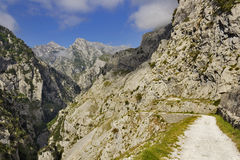 Gorge of River Cares in Asturias Stock Photography