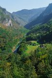 The gorge of the river Tara in Montenegro surrounded by picturesque mountains.Europe. royalty free stock images