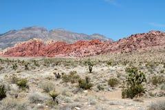 Gorge rouge de roche Images stock