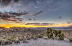 Gorge rouge de roche, Nevada photo stock