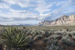 Gorge rouge Nevada de roche Image libre de droits