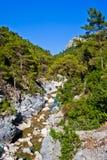 Gorge sauvage de montagne Photographie stock libre de droits