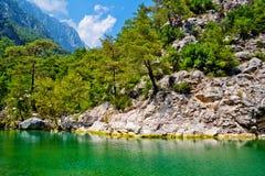 Gorge sauvage de montagne Images libres de droits