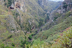 A gorge in the south of Crete, Greece Royalty Free Stock Images