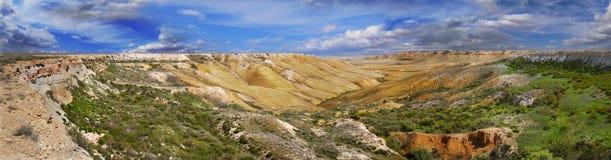 Gorge sur du plateau Oust-Ourt Photos libres de droits