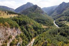 Gorge Tara - Monténégro Photographie stock