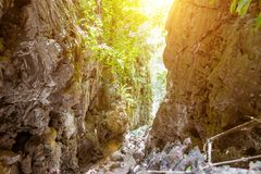 Gorge in the tropical mountains. Jungle, access to the lagoon on top of the cliffs of the Railay Peninsula. Sunny day. Beautiful forest clean green landscape royalty free stock images