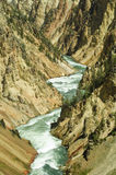 Gorge of the yellowstone river Stock Image