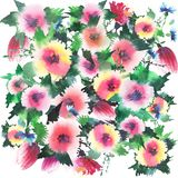 Gorgeous abstract bright sophisticated floral spring colorful wildflowers with buds pattern watercolor. Hand sketch Royalty Free Stock Images