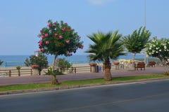 Gorgeous Alanya, Turkey stock image