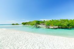 Charming inviting view of tropical white sand beach and tranquil turquoise ocean lagoon on blue sky background Stock Image