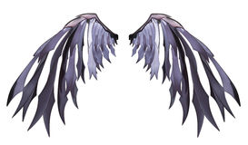 Gorgeous angel wing isolated on white background with clipping path Stock Photography
