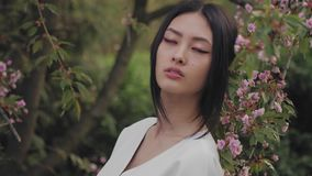 Asian woman outdoors on spring against flower blossom stock video