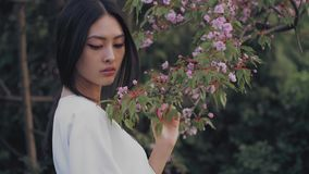 Asian woman outdoors on spring against flower blossom stock video footage