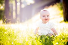 Gorgeous baby girl on a sunny meadow portrait Royalty Free Stock Images