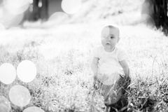 Gorgeous baby girl on a sunny meadow portrait Stock Images