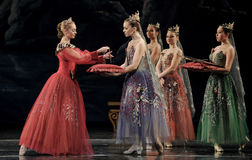 Gorgeous ballet girls. Ballet Swan Lake by Russian State Ballet performed in Jiangxi Art Center Royalty Free Stock Photo