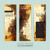 Gorgeous banner template set design Stock Photo