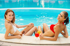 Gorgeous beauties at the pool. Royalty Free Stock Images