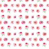 Gorgeous beautiful bright cute lovely magnificent spring colorful wildflowers roses with buds pattern watercolor Royalty Free Stock Photos