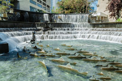 gorgeous beautiful view of decorated mini waterfall in Toronto city on sunny day Royalty Free Stock Photos