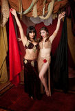 Gorgeous Belly Dancers Stock Image