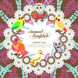 Gorgeous birds template Royalty Free Stock Image