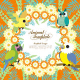 Gorgeous birds template Royalty Free Stock Photos