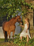 Gorgeous blond girl with a horse Stock Image