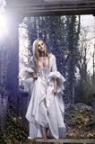 Gorgeous blonde beauty in a old-fashioned dress. In a forest Royalty Free Stock Photos