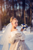 Gorgeous blonde  bride in wedding dress with bouquet of blue roses with cotton in winter park Stock Photography