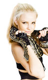 Gorgeous Blonde Snake Handler Royalty Free Stock Photos