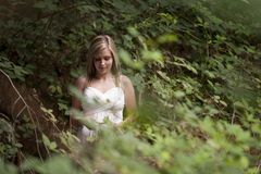 Gorgeous blonde teen girl in forest Royalty Free Stock Photos