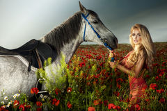 Gorgeous blonde woman posing with horse. Stock Image