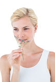 Gorgeous blonde woman smelling dried flower Royalty Free Stock Photos
