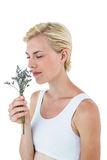 Gorgeous blonde woman smelling flowers Royalty Free Stock Photography