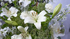 Gorgeous bouquet of white lilies and carnations flowers. Royalty Free Stock Photography
