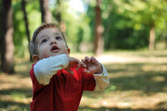 Gorgeous boy. Portrait with gorgeous little boy in the park Stock Image